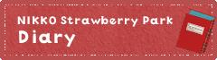 NIKKOStrawberry Park Diary