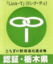 Link-T
